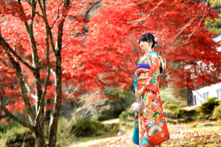 Kouyou_0032