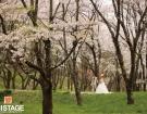 bridal_025_b