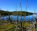 Patagonia032