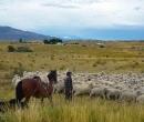 Patagonia037
