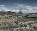 Patagonia042